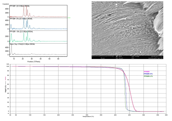 Composite processing and study of properties for polypropylene EPD60R/modified nanoclay Cloisite® 15A