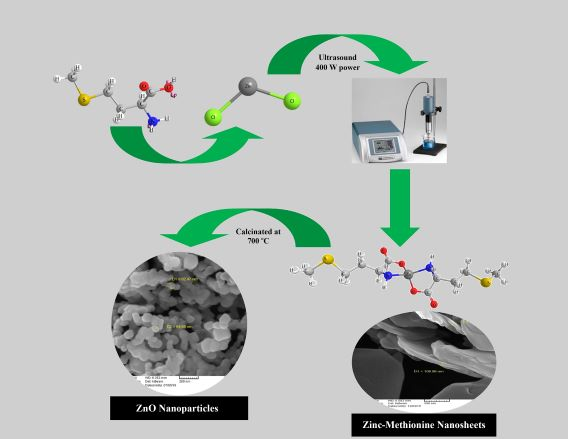 Ultrasonic synthesis of Zn(II) methionine and ZnO nanostructures as a new precursor for ZnO nanoparticles and in-vitro study